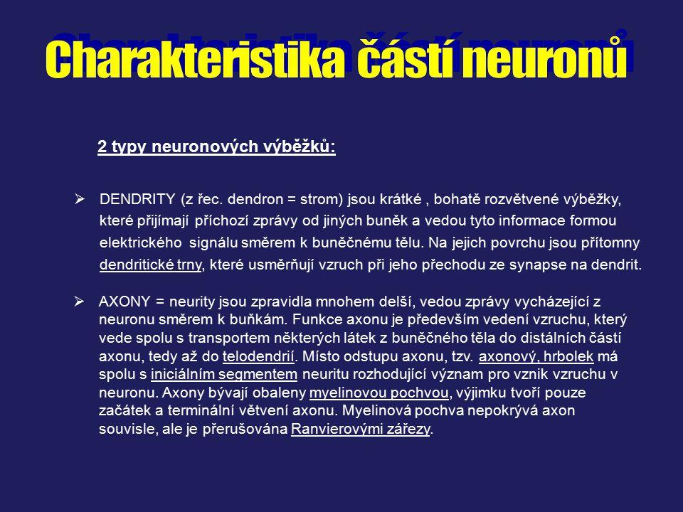 2 typy neuronových výběžků:  AXONY = neurity jsou zpravidla mnohem delší, vedou zprávy vycházející z neuronu směrem k buňkám. Funkce axonu je předevš