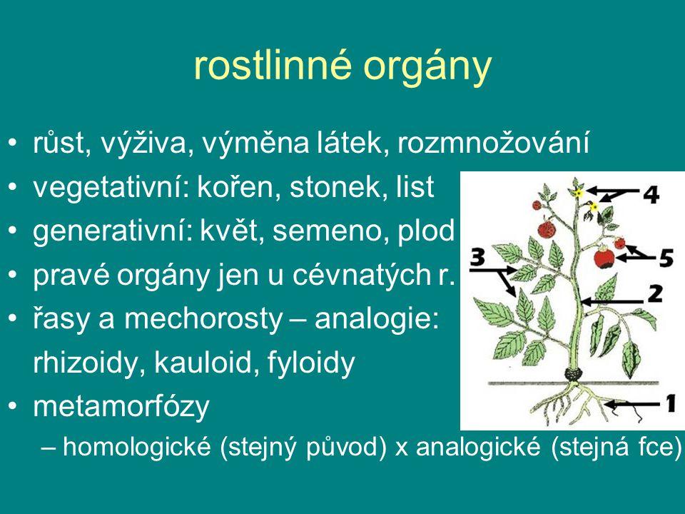 rostlinné orgány růst, výživa, výměna látek, rozmnožování vegetativní: kořen, stonek, list generativní: květ, semeno, plod (krytosemenné) pravé orgány
