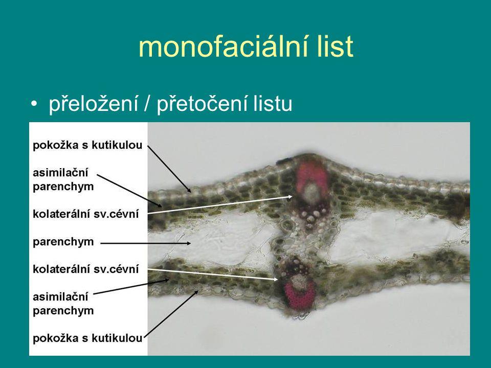 monofaciální list přeložení / přetočení listu