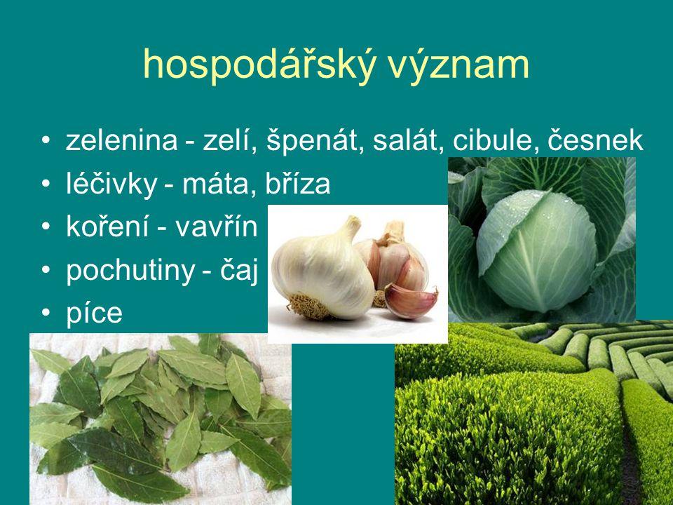 hospodářský význam zelenina - zelí, špenát, salát, cibule, česnek léčivky - máta, bříza koření - vavřín pochutiny - čaj píce