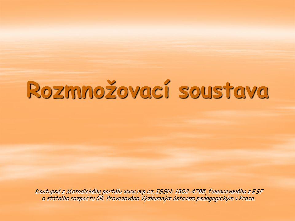 Rozmnožovací soustava Dostupné z Metodického portálu www.rvp.cz, ISSN: 1802-4785, financovaného z ESF a státního rozpočtu ČR. Provozováno Výzkumným ús