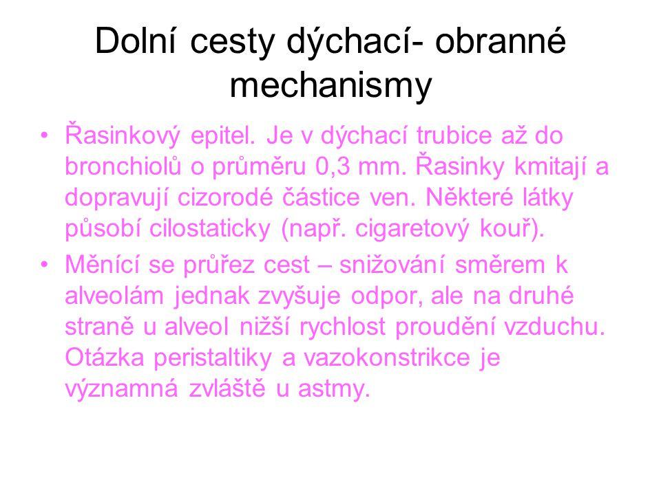 Dolní cesty dýchací- obranné mechanismy Řasinkový epitel.