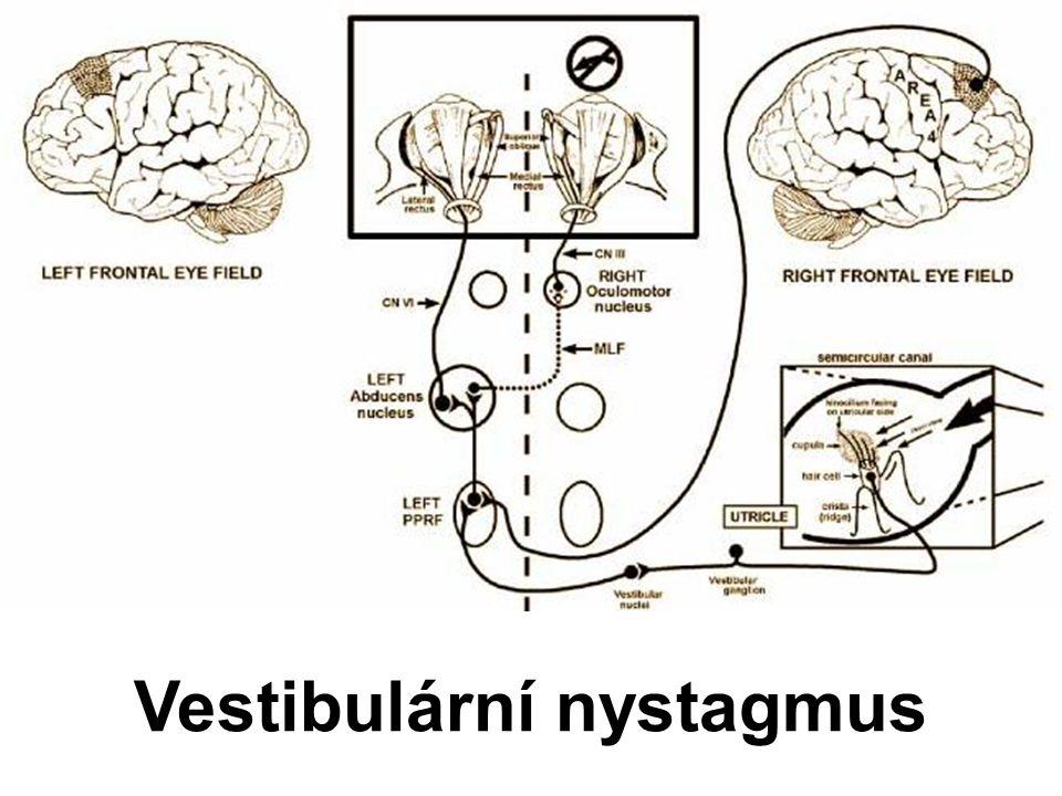 Vestibulární nystagmus