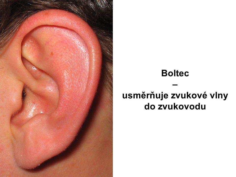 Eustachova trubice