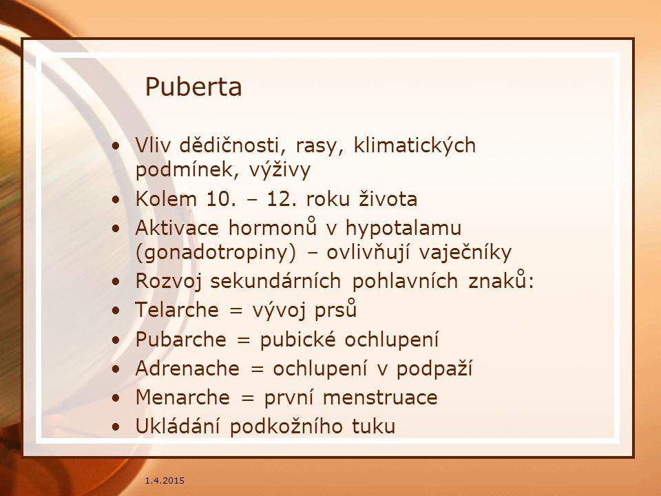 Puberta Vliv dědičnosti, rasy, klimatických podmínek, výživy Kolem 10. – 12. roku života Aktivace hormonů v hypotalamu (gonadotropiny) – ovlivňují vaj