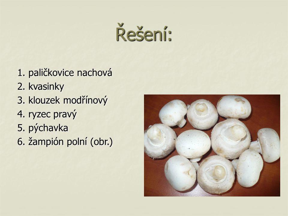 Řešení: 1. paličkovice nachová 2. kvasinky 3. klouzek modřínový 4. ryzec pravý 5. pýchavka 6. žampión polní (obr.)