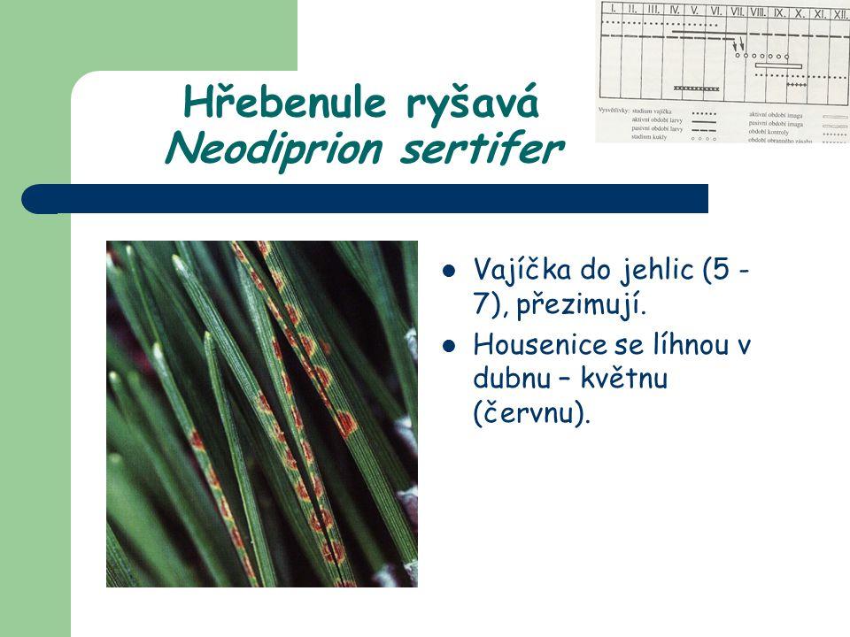 Na Pinus sylvestris, P.mugo, P. nigra, P. cembra.