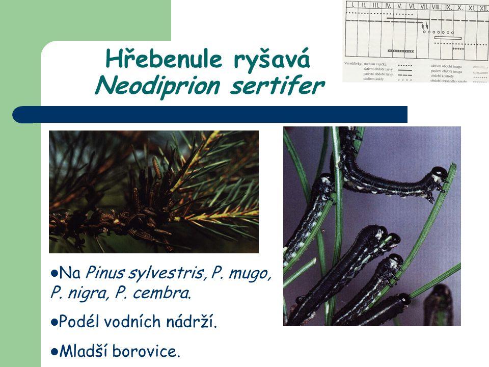 Na Pinus sylvestris, P. mugo, P. nigra, P. cembra. Podél vodních nádrží. Mladší borovice. Hřebenule ryšavá Neodiprion sertifer