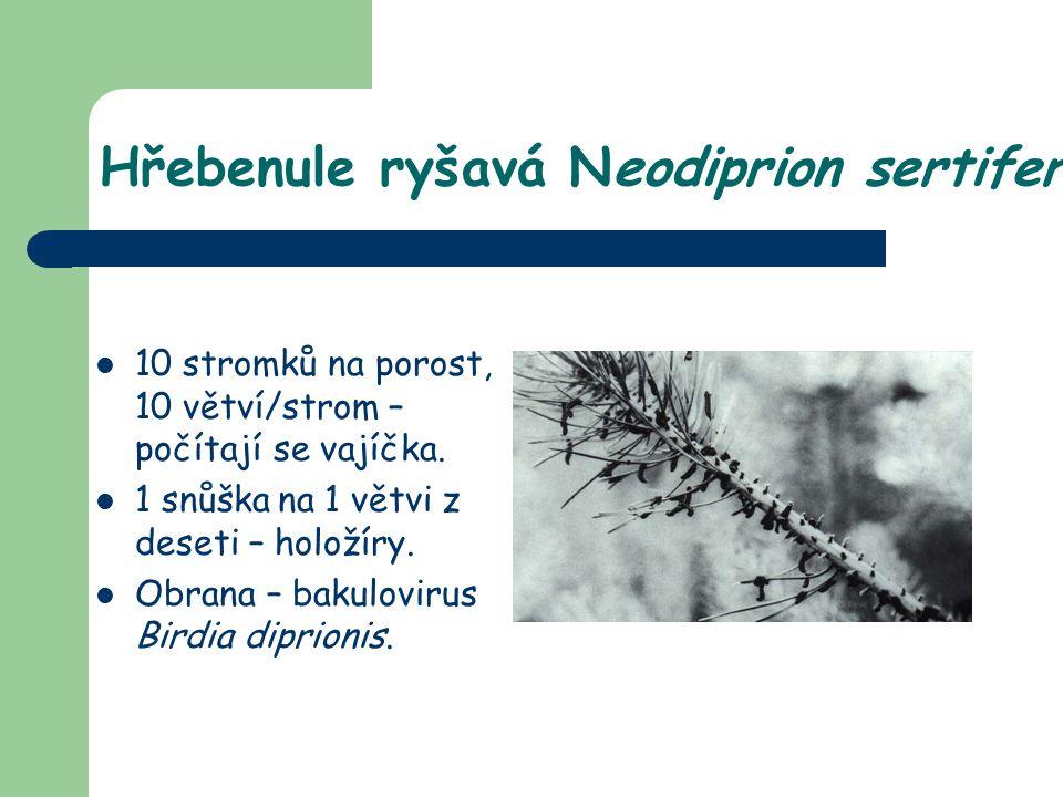 10 stromků na porost, 10 větví/strom – počítají se vajíčka. 1 snůška na 1 větvi z deseti – holožíry. Obrana – bakulovirus Birdia diprionis.
