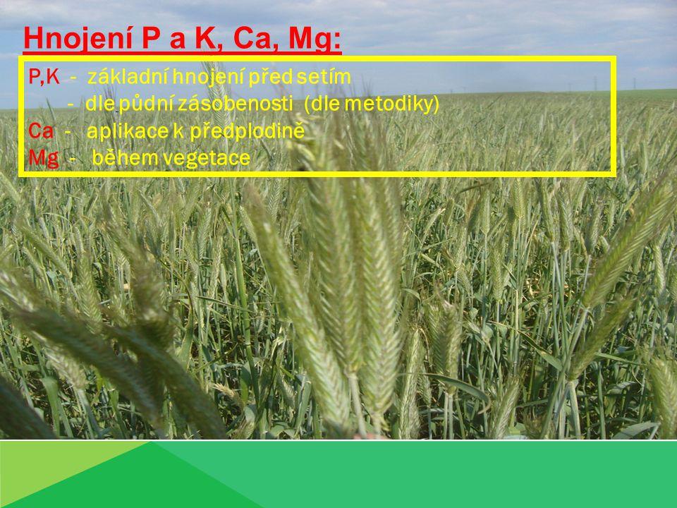 Hnojení P a K, Ca, Mg: P,K - základní hnojení před setím - dle půdní zásobenosti (dle metodiky) Ca - aplikace k předplodině Mg - během vegetace