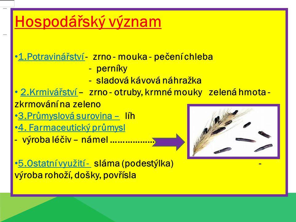 Hospodářský význam 1.Potravinářství - zrno - mouka - pečení chleba - perníky - sladová kávová náhražka 2.Krmivářství – zrno - otruby, krmné mouky zele