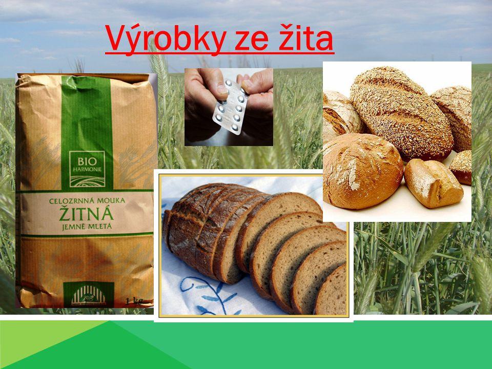Výrobky ze žita