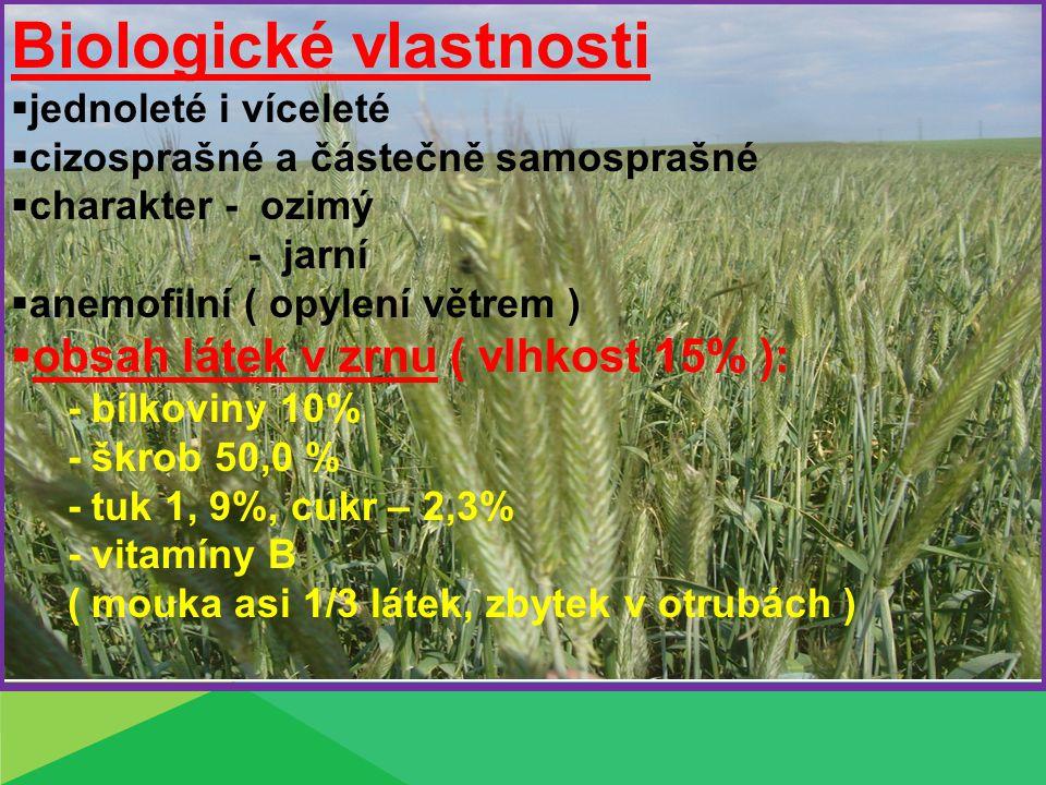 Vzhled: Kořen – mohutný, dobře vyvinutý Stéblo - duté - nejdelší z obilovin 1,0 – 2,0 m, modravý nádech List – krátký jazýček, ouška – malá, lysá Květenství – osinatý klas: Zrno – delší a užší, nahé, zbarvené zeleně až modro- zeleně HTS – 25 – 40g obj.hnot.65 – 75 kg