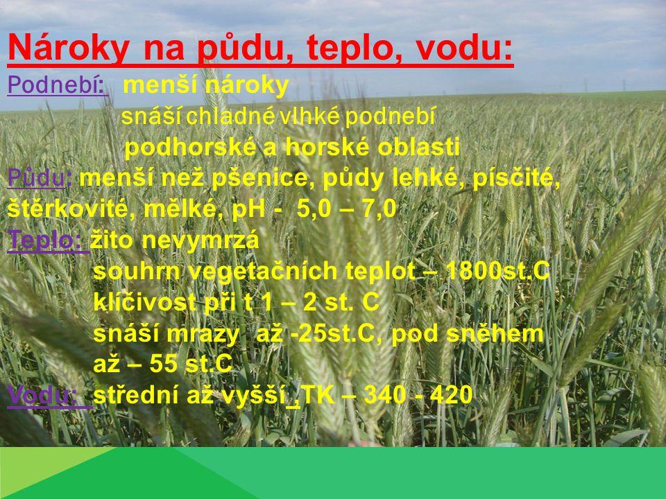 Osevní postup: dobrá tolerantnost vůči předplodině Nejlepší předplodiny : olejniny - LOS luskoviny jednoleté pícniny včas sklizené okopaniny a jeteloviny Vhodnost žita, jako předlodiny: okopaniny luskoviny LOS