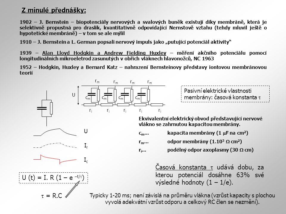 Proud Vzdálenost od elektrody (mm) Pasivní elektrické vlastnosti membrány: délková konstanta λ rmrm rmrm rmrm rmrm riri riri riri riri riri U cmcm cmcm cmcm cmcm vzdálenost UmUm x U0U0 x0 Axoplasma Aplikační elektroda Registrační elektroda Do nervového vlákna aplikujeme krátký pravoúhlý puls.