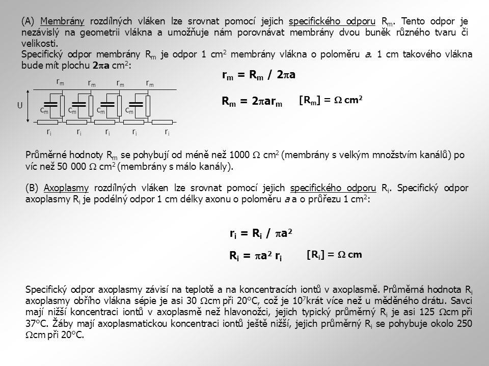(A) Membrány rozdílných vláken lze srovnat pomocí jejich specifického odporu R m. Tento odpor je nezávislý na geometrii vlákna a umožňuje nám porovnáv
