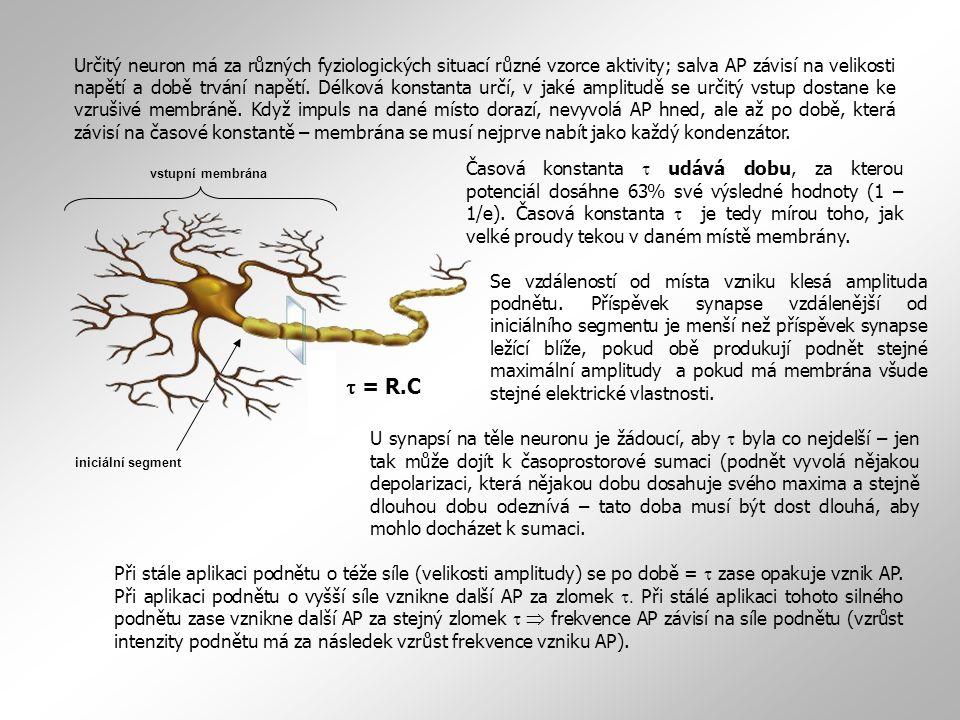 Z potřeby co nejvyšší hodnoty délkové konstanty vyplývají dvě strategie pasivního šíření impulsu podél axonu:  snížení vnitřního odporu axoplasmy r i zvýšením průměru vlákna.