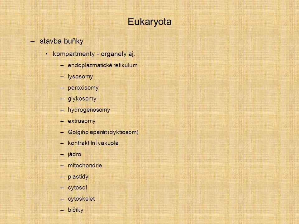 Eukaryota –stavba buňky kompartmenty - organely aj. –endoplazmatické retikulum –lysosomy –peroxisomy –glykosomy –hydrogenosomy –extrusomy –Golgiho apa