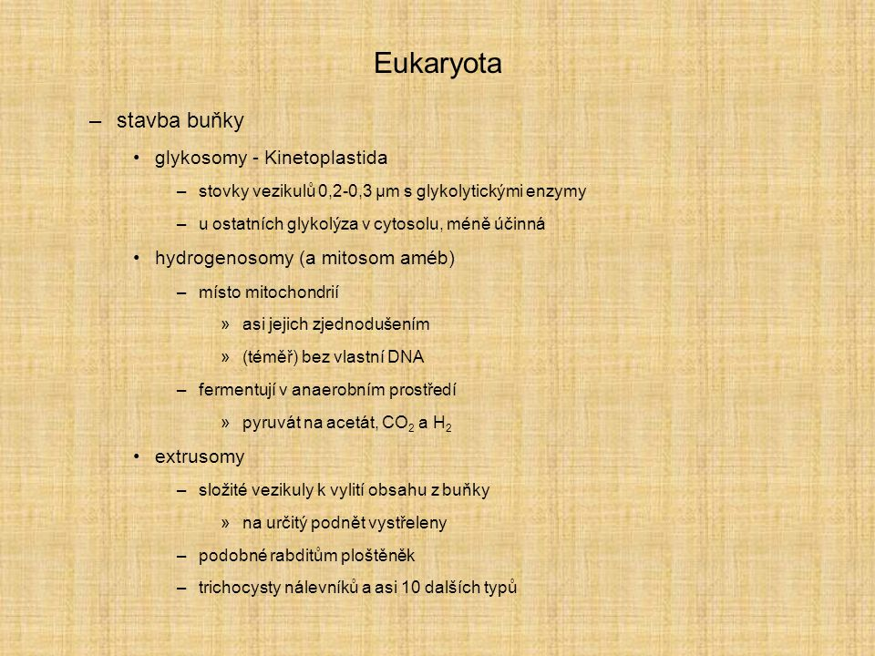 Eukaryota –stavba buňky glykosomy - Kinetoplastida –stovky vezikulů 0,2-0,3 µm s glykolytickými enzymy –u ostatních glykolýza v cytosolu, méně účinná hydrogenosomy (a mitosom améb) –místo mitochondrií »asi jejich zjednodušením »(téměř) bez vlastní DNA –fermentují v anaerobním prostředí »pyruvát na acetát, CO 2 a H 2 extrusomy –složité vezikuly k vylití obsahu z buňky »na určitý podnět vystřeleny –podobné rabditům ploštěněk –trichocysty nálevníků a asi 10 dalších typů