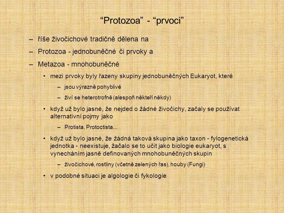 """""""Protozoa"""" - """"prvoci"""" –říše živočichové tradičně dělena na –Protozoa - jednobuněčné či prvoky a –Metazoa - mnohobuněčné mezi prvoky byly řazeny skupin"""