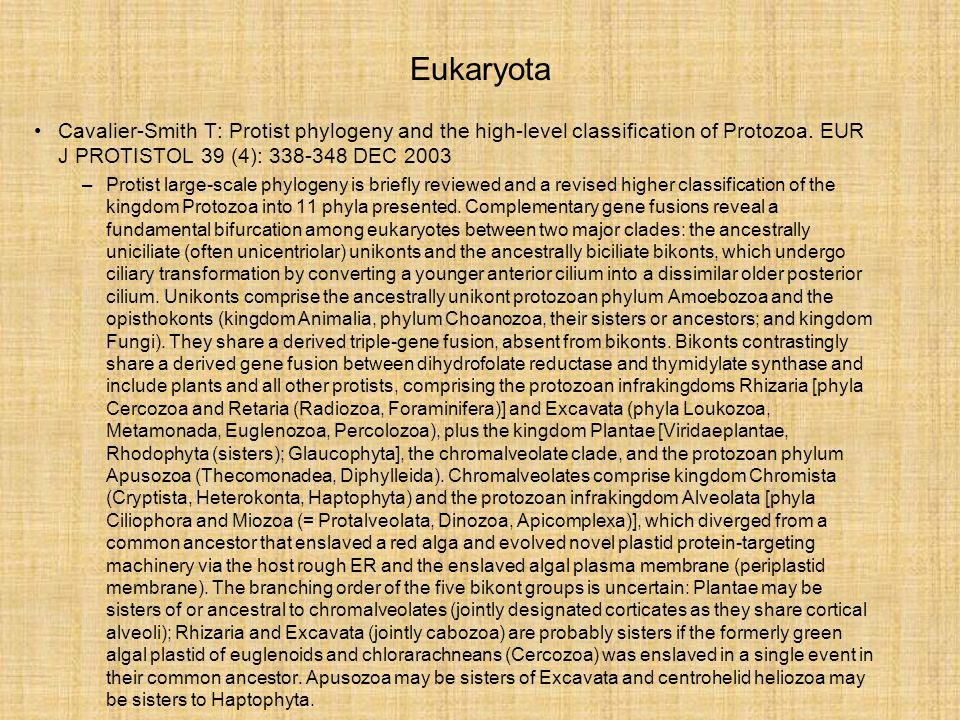 Eukaryota –stavba buňky plastidy –ochočené sinice »zbytek vlastního genomu –chlorofyl a jiná barviva »zachytávající fotony »transportující energii (zejména jako elektrony) »použití k rozkladu vody »vodík z vody použit k redukci CO 2 »autotrofie
