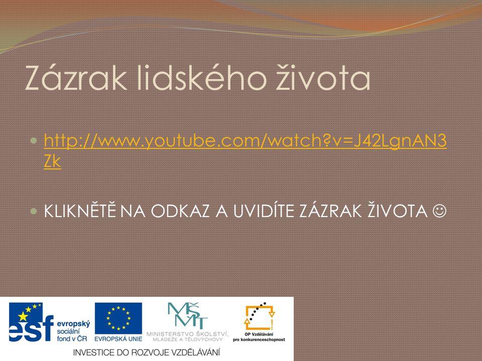 Zázrak lidského života http://www.youtube.com/watch?v=J42LgnAN3 Zk http://www.youtube.com/watch?v=J42LgnAN3 Zk KLIKNĚTĚ NA ODKAZ A UVIDÍTE ZÁZRAK ŽIVO