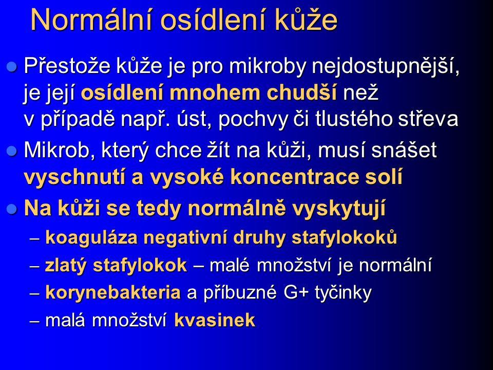 Molluscum contagiosum kožní onemocnění, časté u HIV+.