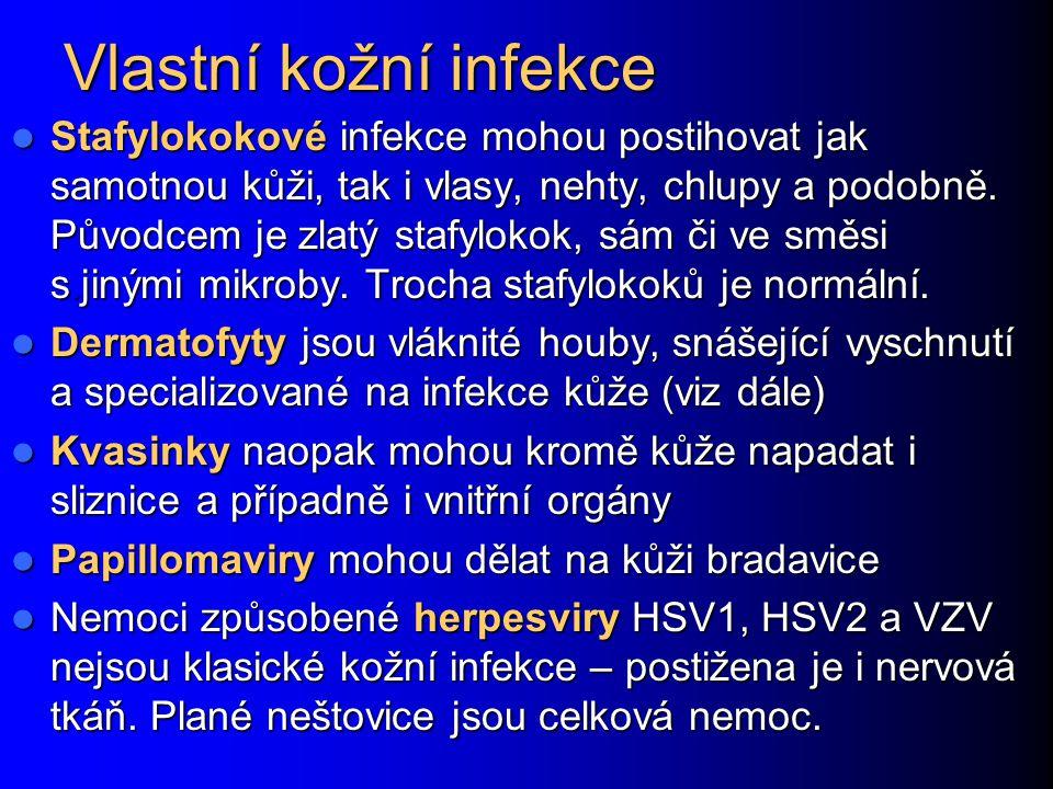 Rohovkový vřed http://www.meduni- graz.at/augenheilkunde/ahk_site/diaschau/dia_hh/dia_hh_ulcus/di a_hh_ulcus_8/dia_hh_ulcus_8_diag.html