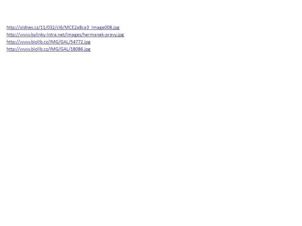 http://oidnes.cz/11/032/cl6/MCE2a8ca3_image008.jpg http://www.bylinky-intra.net/images/hermanek-pravy.jpg http://www.biolib.cz/IMG/GAL/54772.jpg http: