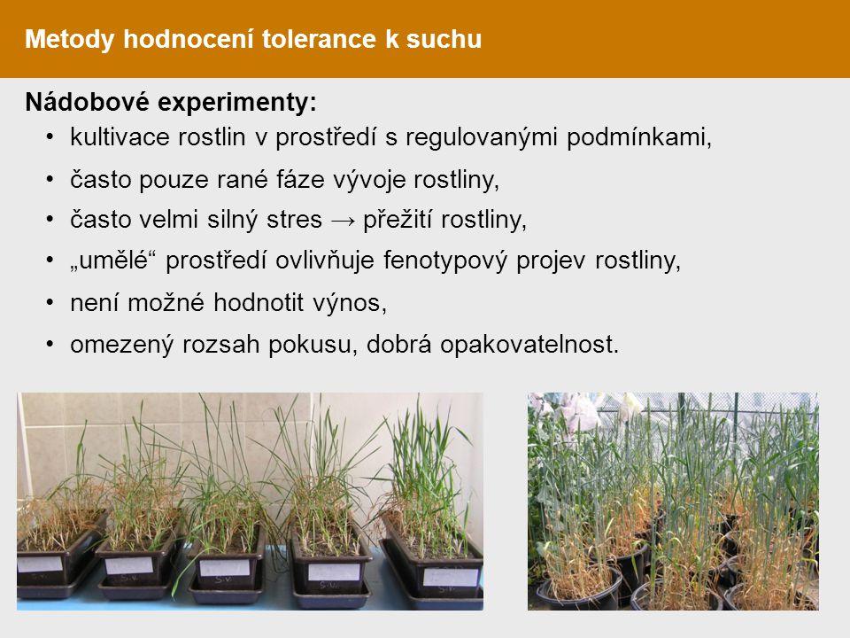 Metody hodnocení tolerance k suchu Nádobové experimenty: kultivace rostlin v prostředí s regulovanými podmínkami, často pouze rané fáze vývoje rostlin