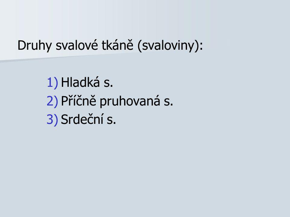 Druhy svalové tkáně (svaloviny): 1) 1)Hladká s. 2) 2)Příčně pruhovaná s. 3) 3)Srdeční s.
