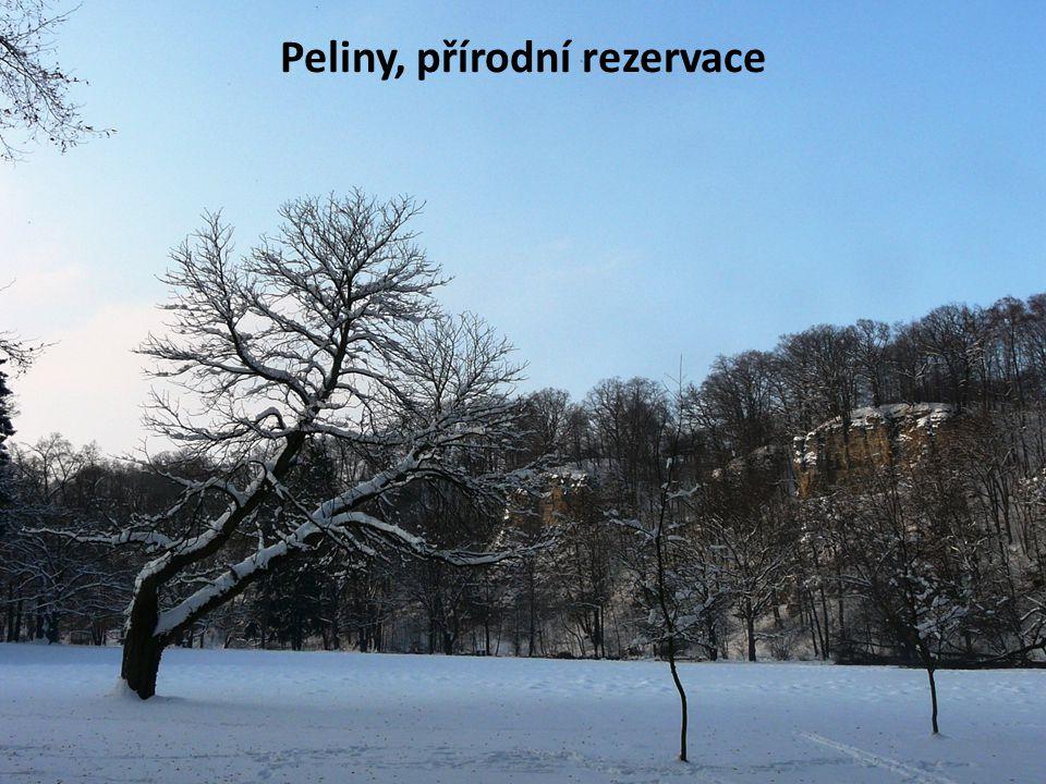 Peliny, přírodní rezervace