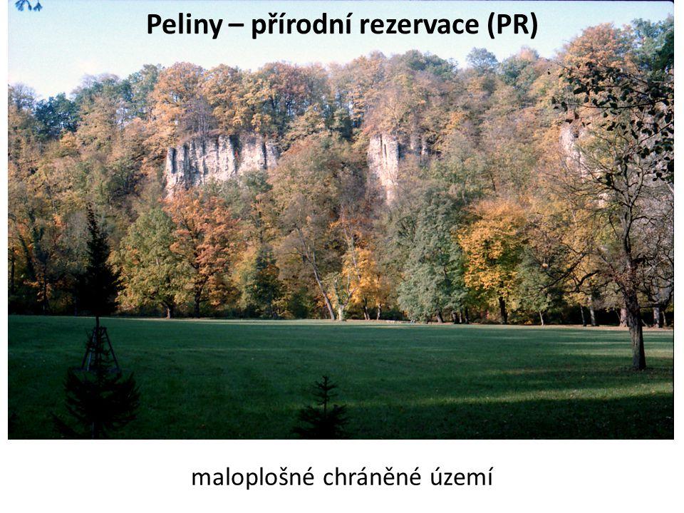 Peliny – přírodní rezervace (PR) maloplošné chráněné území