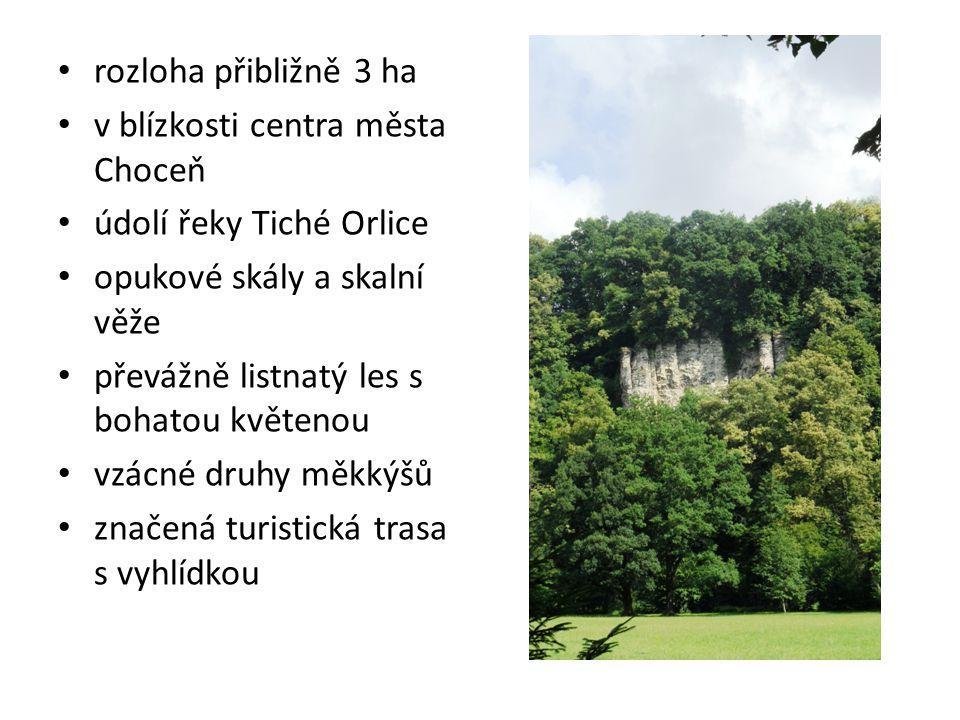 rozloha přibližně 3 ha v blízkosti centra města Choceň údolí řeky Tiché Orlice opukové skály a skalní věže převážně listnatý les s bohatou květenou vz