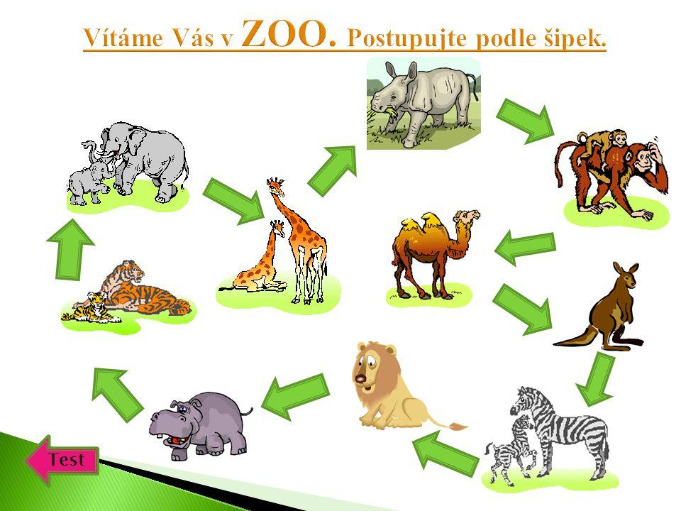 Slon je největší žijící suchozemský savec.