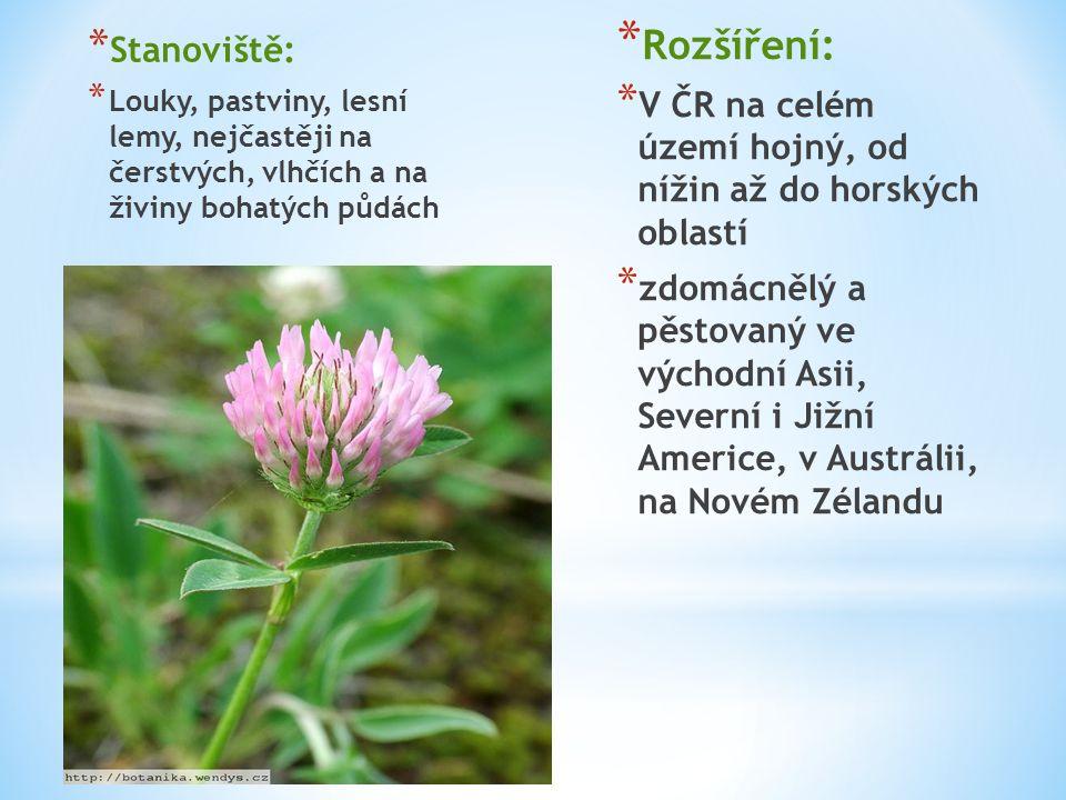 * Užití: * Poddruh sativum (jetel luční setý) je jednou z nejvýznamnějších pícnin * V USA se z jetele vyrábí řada nejrůznějších potravních doplňků * Léčitelství: * jsou využívány jako léčivé rostliny, nejlépe květenství červená, případně bílá,vyrábí se z nich mast..