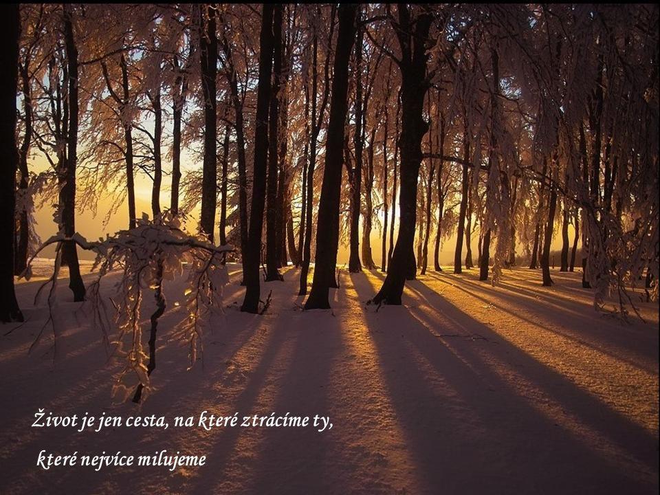 Život je jen cesta, na které ztrácíme ty, které nejvíce milujeme