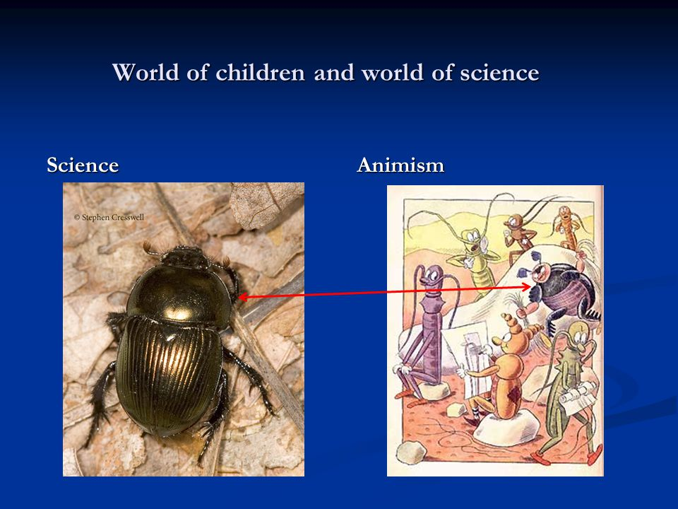 World of children and world of science Science Animism