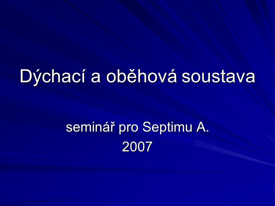 Dýchací a oběhová soustava seminář pro Septimu A. 2007
