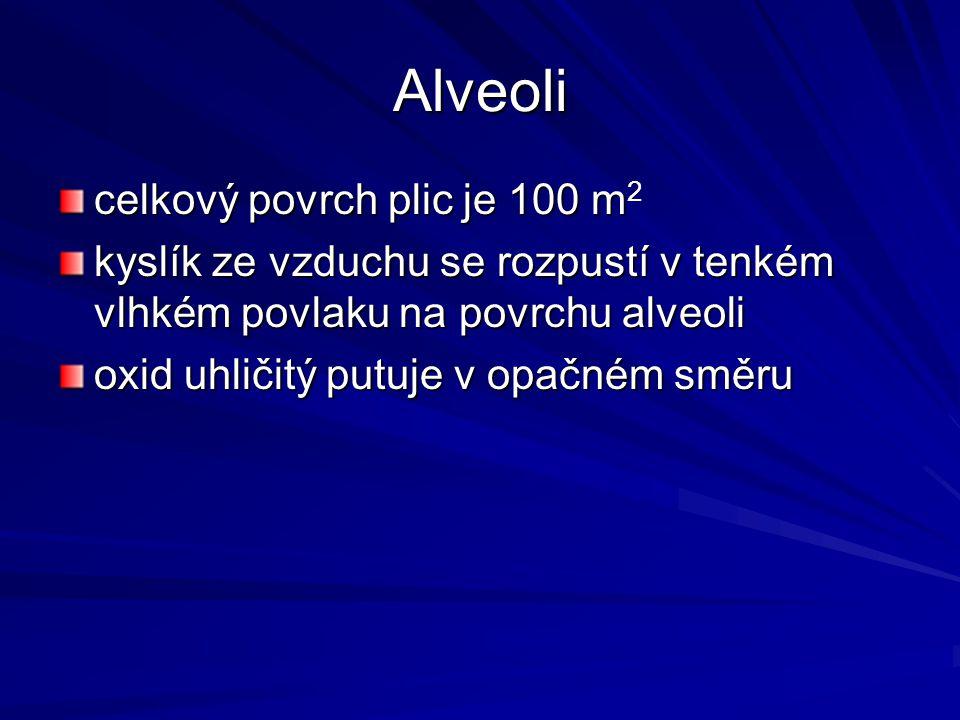 Alveoli celkový povrch plic je 100 m celkový povrch plic je 100 m 2 kyslík ze vzduchu se rozpustí v tenkém vlhkém povlaku na povrchu alveoli oxid uhli
