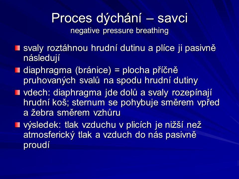 Proces dýchání – savci negative pressure breathing svaly roztáhnou hrudní dutinu a plíce ji pasivně následují diaphragma (bránice) = plocha příčně pru