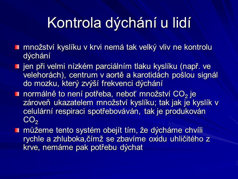 Kontrola dýchání u lidí množství kyslíku v krvi nemá tak velký vliv ne kontrolu dýchání jen při velmi nízkém parciálním tlaku kyslíku (např. ve veleho