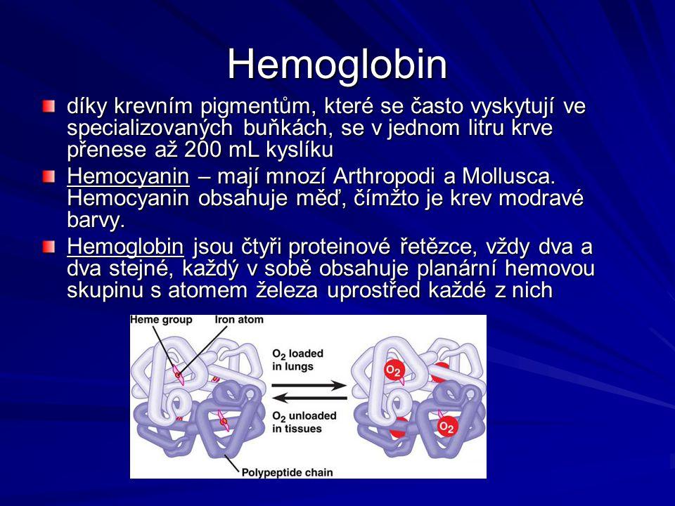 Hemoglobin díky krevním pigmentům, které se často vyskytují ve specializovaných buňkách, se v jednom litru krve přenese až 200 mL kyslíku Hemocyanin –