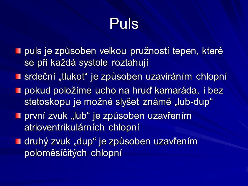 """Puls puls je způsoben velkou pružností tepen, které se při každá systole roztahují srdeční """"tlukot"""" je způsoben uzavíráním chlopní pokud položíme ucho"""