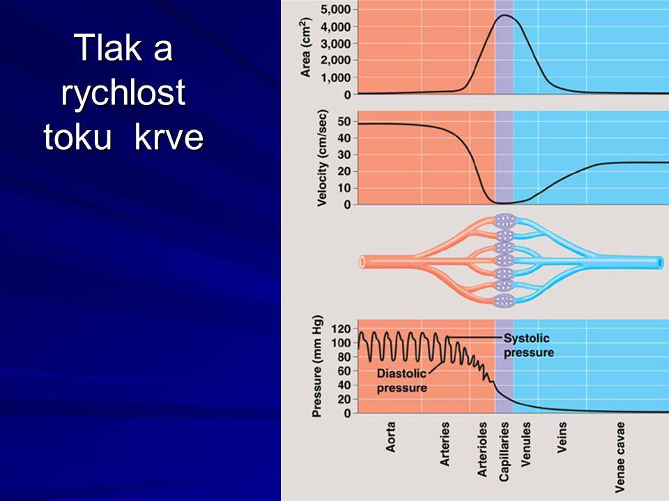 Tlak a rychlost toku krve
