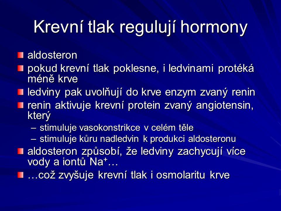 Krevní tlak regulují hormony aldosteron pokud krevní tlak poklesne, i ledvinami protéká méně krve ledviny pak uvolňují do krve enzym zvaný renin renin