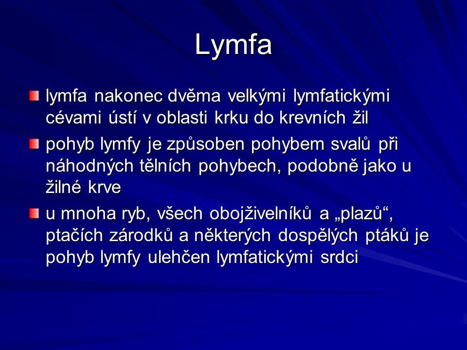Lymfa lymfa nakonec dvěma velkými lymfatickými cévami ústí v oblasti krku do krevních žil pohyb lymfy je způsoben pohybem svalů při náhodných tělních