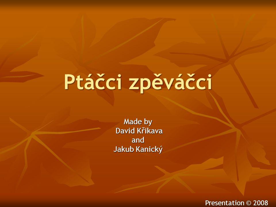 Ptáčci zpěváčci Made by David Křikava David Křikavaand Jakub Kanický Presentation © 2008