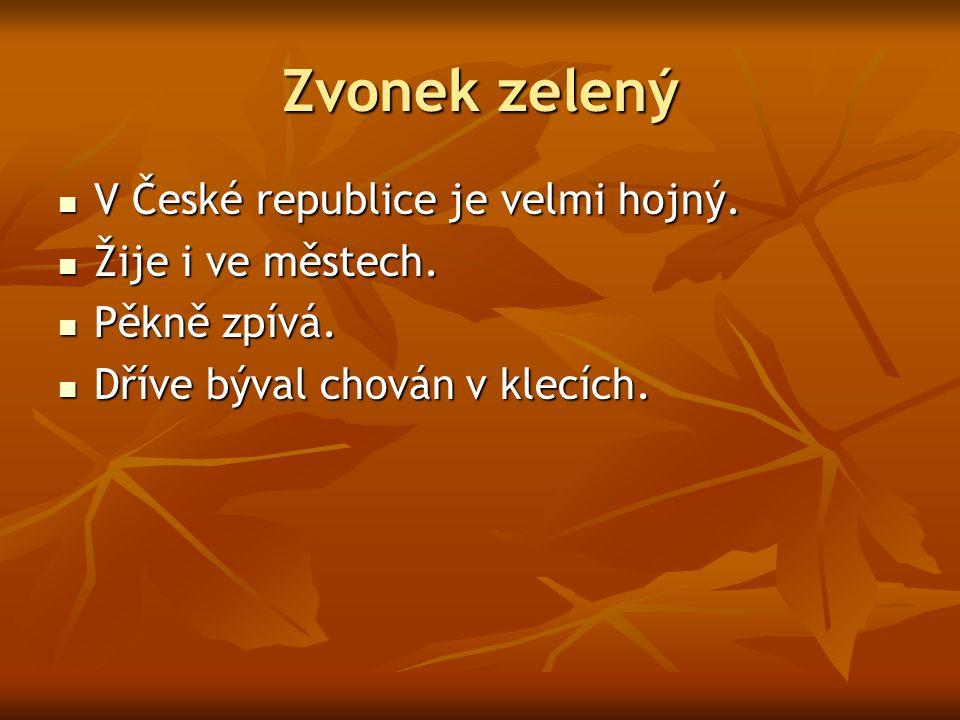 Zvonek zelený V České republice je velmi hojný. V České republice je velmi hojný. Žije i ve městech. Žije i ve městech. Pěkně zpívá. Pěkně zpívá. Dřív