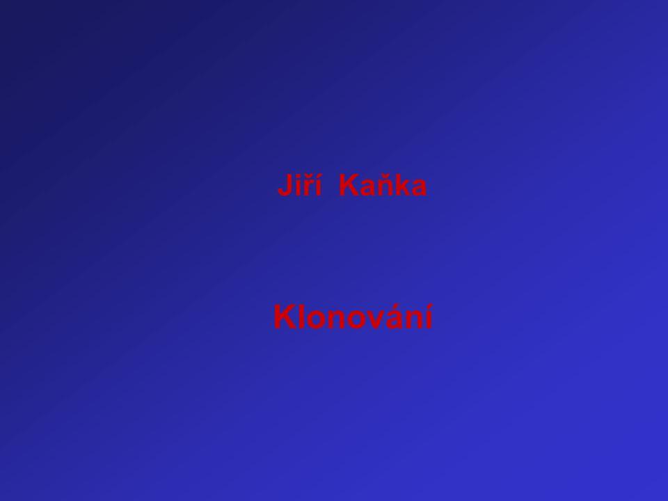 Jiří Kaňka Klonování